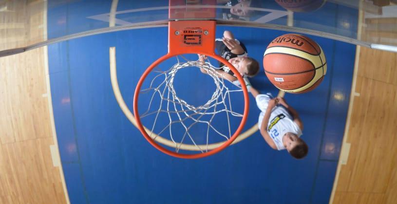 Basketball players availability
