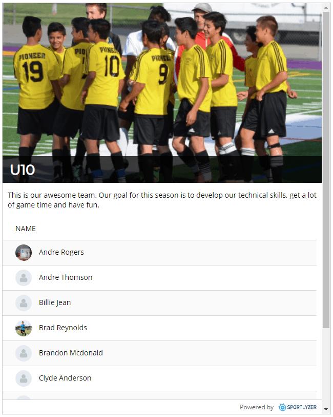 Sportlyzer team widget
